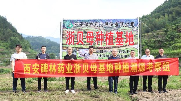 千里追寻道地药材- 公司董事长兼总经理夏志东深入浙贝母种植基地